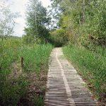 ecotrail Wanderweg im Naturschutzgebiet