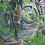 Biketrail mit ecotrail im Wald
