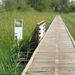 Wanderweg mit ecotrail