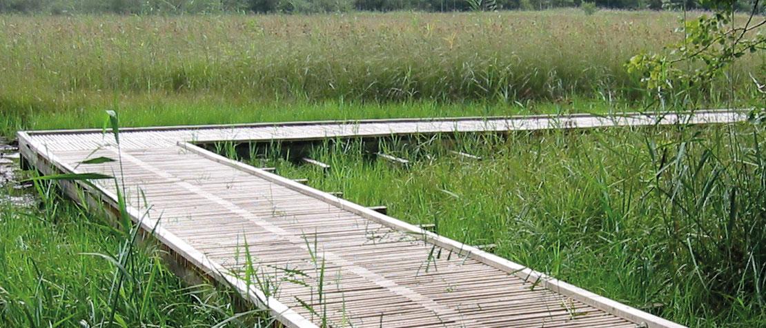 Bodenschutz in Naturschutzgebiet