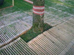 Baumschutz mit ecopark