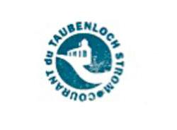 Logo Ökostromprodukts des Energie Service Biel