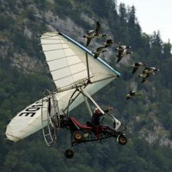 Christan Moullec mit Ultragleitflieger und seinen Gänsen