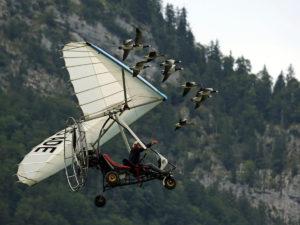 Christan Moullec mit Ultragleitflieger und zehn Gänsen