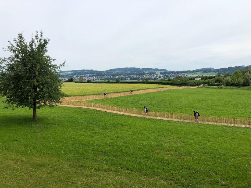 Der Fussweg vom Gemeindehaus Seegräben zur Juckerfarm. Ansicht vom Gemeindehaus den Hügel hinauf zum Juckerhof - Sicht auf das Obstlabyrinth. Naturweg aus Holzrosten ecopark mit Fussgängern..
